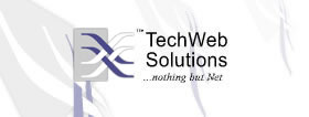 TechWeb Solutions' Header Logo